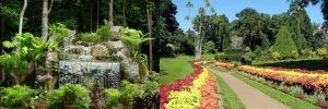 botanical-garden-collage
