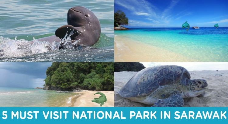 national-park-sarawak