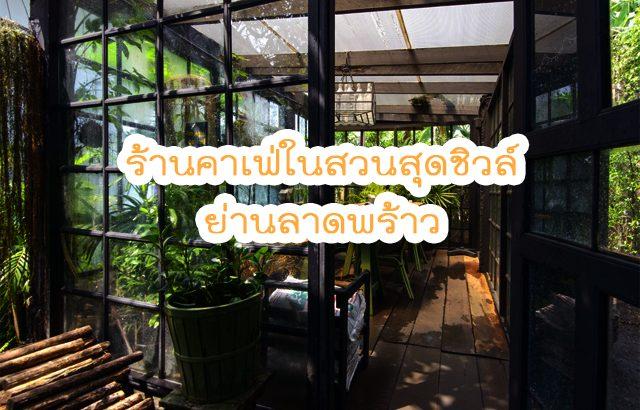 treat_cafe